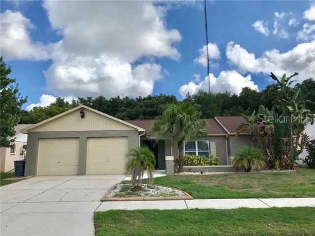 2721 Narcissus Drive, Holiday, FL 34691 (MLS #T3181322) :: Rabell Realty Group