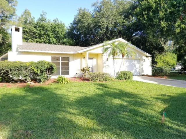 11 Freshwater Drive, Palm Harbor, FL 34684 (MLS #T3181373) :: The Duncan Duo Team