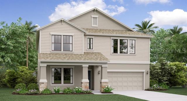 9109 Shadyside Lane, Land O Lakes, FL 34637 (MLS #T3181410) :: The Duncan Duo Team