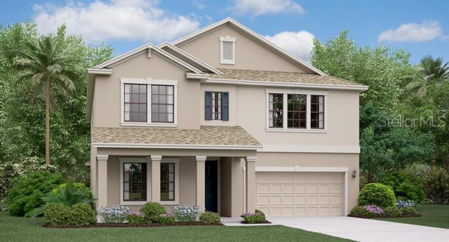 9085 Shadyside Lane, Land O Lakes, FL 34637 (MLS #T3181412) :: The Duncan Duo Team