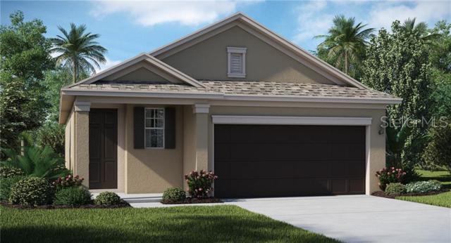17676 Breakaway Street, Land O Lakes, FL 34638 (MLS #T3181437) :: RE/MAX CHAMPIONS