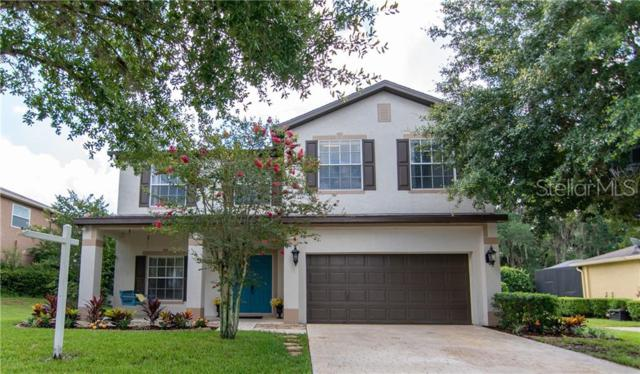 6110 Heroncrest Court, Lithia, FL 33547 (MLS #T3181480) :: The Duncan Duo Team