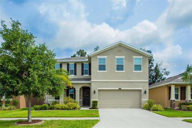 10612 Scenic Hollow Drive, Riverview, FL 33578 (MLS #T3181514) :: Team Bohannon Keller Williams, Tampa Properties