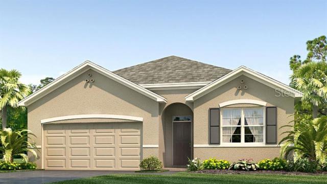 9260 Watolla Drive, Thonotosassa, FL 33592 (MLS #T3181587) :: RE/MAX CHAMPIONS