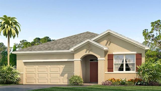 16423 Little Garden Drive, Wimauma, FL 33598 (MLS #T3181595) :: Team Pepka