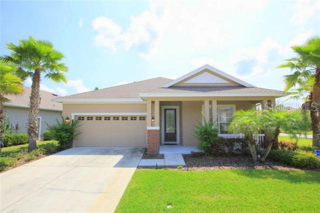 20119 Heritage Point Drive, Tampa, FL 33647 (MLS #T3181599) :: Team Bohannon Keller Williams, Tampa Properties