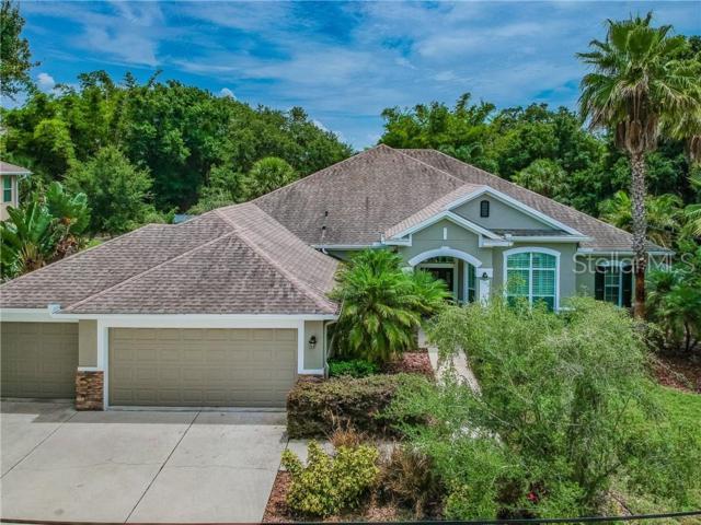 3108 W Paxton Avenue, Tampa, FL 33611 (MLS #T3181606) :: Team 54