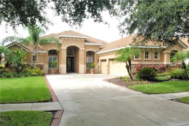 8331 Windsor Bluff Drive, Tampa, FL 33647 (MLS #T3181677) :: Cartwright Realty