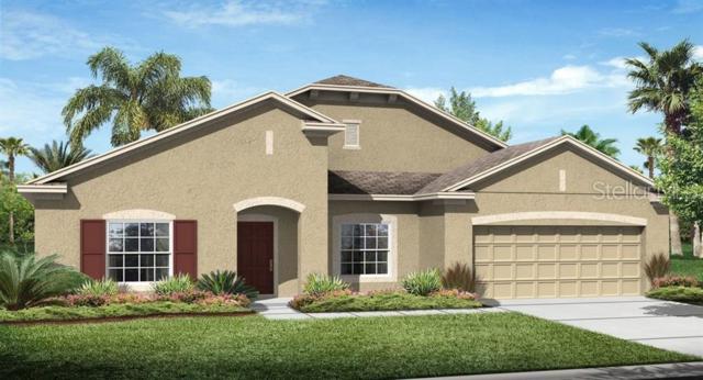 1861 Benevento Street, Saint Cloud, FL 34771 (MLS #T3181688) :: Cartwright Realty