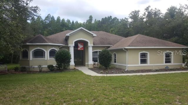10149 Miracle Lane, New Port Richey, FL 34654 (MLS #T3181721) :: Gate Arty & the Group - Keller Williams Realty