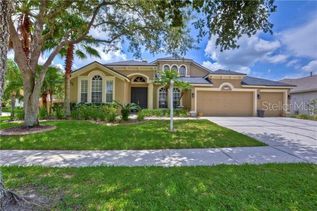 5320 Winhawk Way, Lutz, FL 33558 (MLS #T3181729) :: Premium Properties Real Estate Services