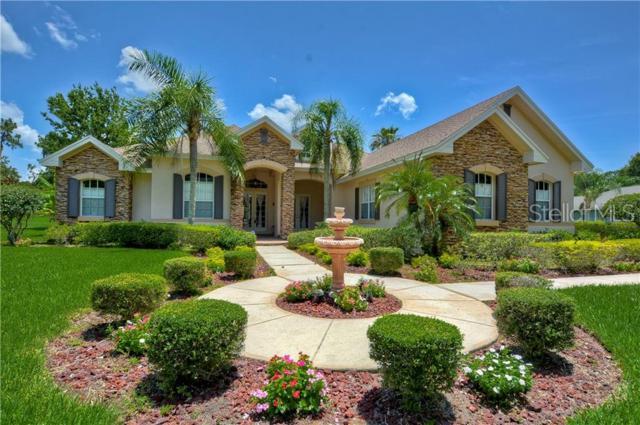 6011 Kestrel Point Avenue, Lithia, FL 33547 (MLS #T3181730) :: Team Bohannon Keller Williams, Tampa Properties
