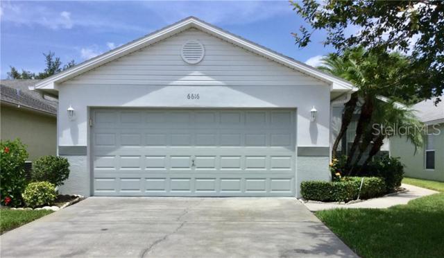 6616 Gentle Ben Circle, Wesley Chapel, FL 33544 (MLS #T3181731) :: Team Bohannon Keller Williams, Tampa Properties