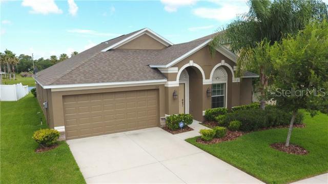 1516 Little Hawk Drive, Ruskin, FL 33570 (MLS #T3181741) :: Lock & Key Realty