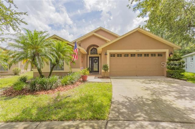 15454 Osprey Glen Drive, Lithia, FL 33547 (MLS #T3181742) :: Jeff Borham & Associates at Keller Williams Realty