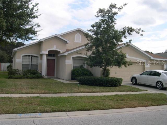 12905 Lake Ventana Drive, Tampa, FL 33625 (MLS #T3181743) :: Team Bohannon Keller Williams, Tampa Properties