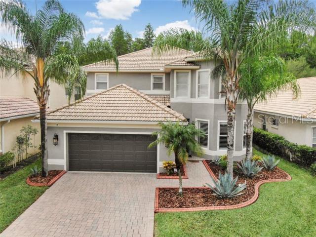18012 Maui Isle Drive, Tampa, FL 33647 (MLS #T3181794) :: Cartwright Realty
