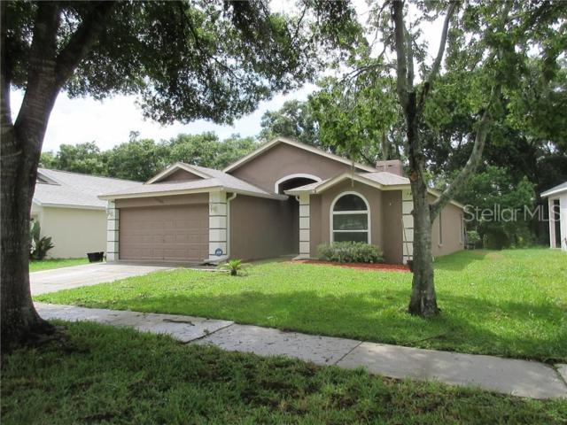 11101 Indian Oaks Drive, Tampa, FL 33625 (MLS #T3181796) :: Cartwright Realty