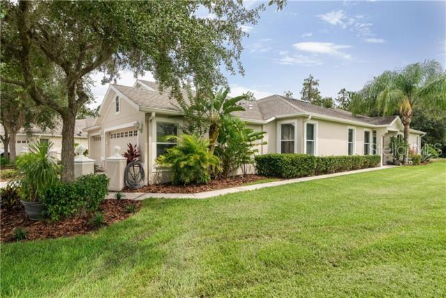 3346 Chapel Creek Circle, Wesley Chapel, FL 33544 (MLS #T3181797) :: Team Bohannon Keller Williams, Tampa Properties
