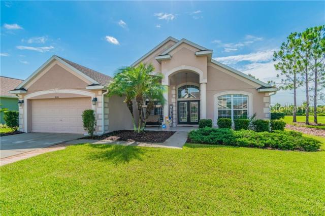 4506 Pointe O Woods Drive, Wesley Chapel, FL 33543 (MLS #T3181802) :: Griffin Group