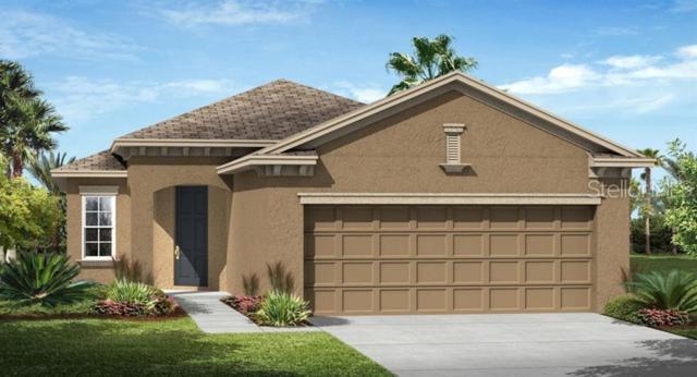 3486 Sagebrush Street, Harmony, FL 34773 (MLS #T3181813) :: The Brenda Wade Team