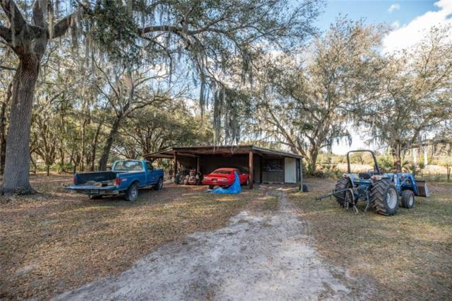 15224 Rough Diamond Ranch Road, Lithia, FL 33547 (MLS #T3181821) :: Premium Properties Real Estate Services
