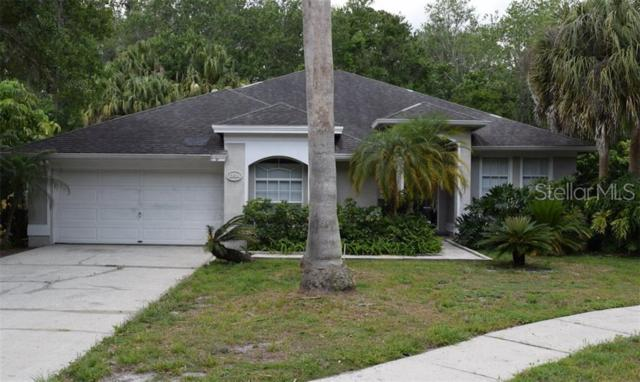 13514 Tufts Place, Tampa, FL 33626 (MLS #T3181839) :: Cartwright Realty