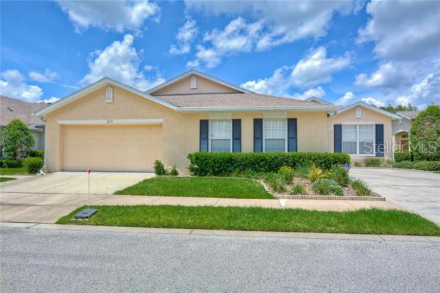 8529 Acorn Ridge Court, Tampa, FL 33625 (MLS #T3181877) :: NewHomePrograms.com LLC