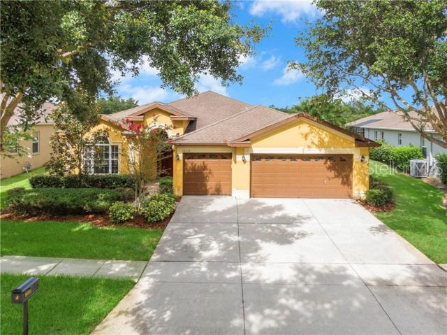 16133 Bridgedale Drive, Lithia, FL 33547 (MLS #T3181888) :: The Duncan Duo Team