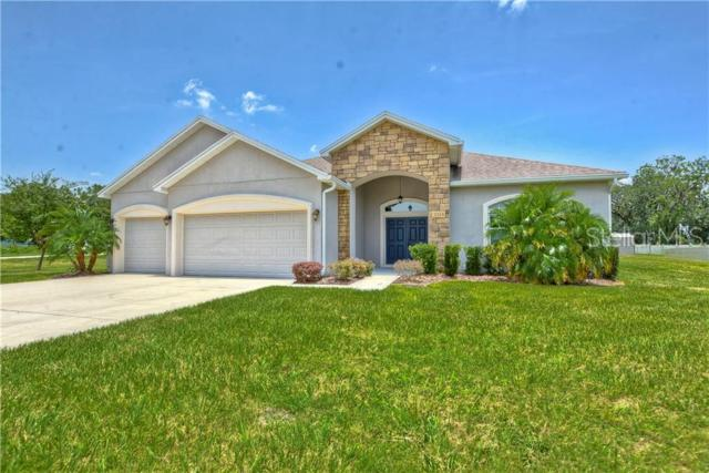 3324 Ranchdale Drive, Plant City, FL 33566 (MLS #T3181946) :: Griffin Group