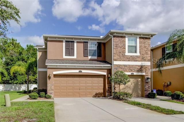 12570 Streamdale Drive, Tampa, FL 33626 (MLS #T3181949) :: Cartwright Realty