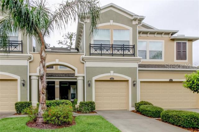12556 Silverdale Street, Tampa, FL 33626 (MLS #T3181960) :: Cartwright Realty