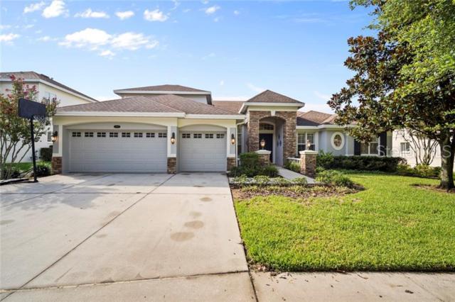 2819 Park Meadow Drive, Valrico, FL 33594 (MLS #T3182002) :: Dalton Wade Real Estate Group