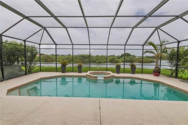 5336 Lakehurst Court, Palmetto, FL 34221 (MLS #T3182007) :: Burwell Real Estate