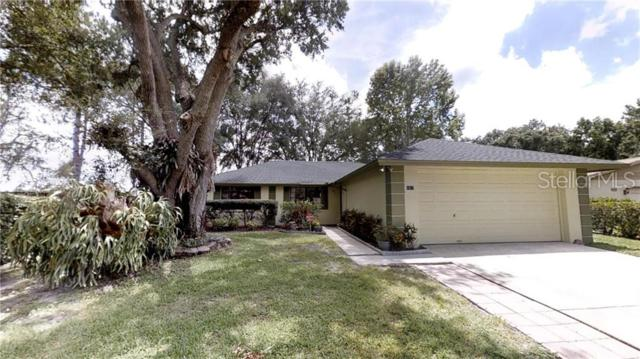 1017 Waterdale Court, Lutz, FL 33559 (MLS #T3182024) :: Premium Properties Real Estate Services