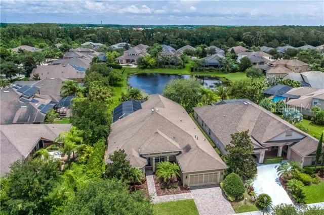 14840 Tudor Chase Drive, Tampa, FL 33626 (MLS #T3182104) :: Andrew Cherry & Company