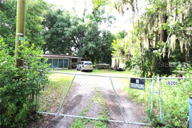 18201 Butte Street, Lutz, FL 33548 (MLS #T3182113) :: Premium Properties Real Estate Services