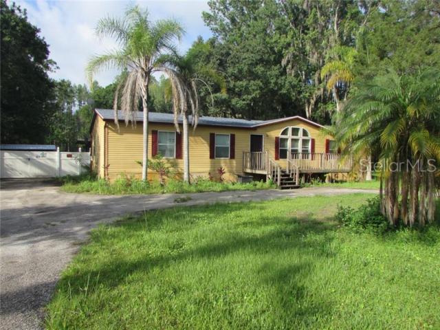 18110 Hanson Rd, Land O Lakes, FL 34638 (MLS #T3182202) :: The Duncan Duo Team