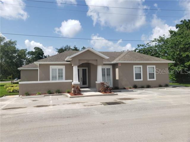 219 Cook Street, Brandon, FL 33511 (MLS #T3182216) :: The Duncan Duo Team