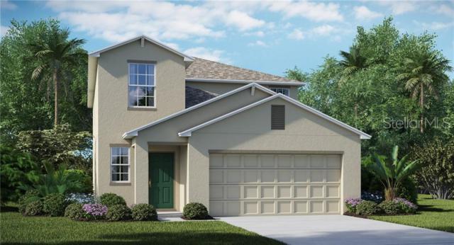 7010 Emerald Spring Loop, New Port Richey, FL 34653 (MLS #T3182230) :: Lock & Key Realty