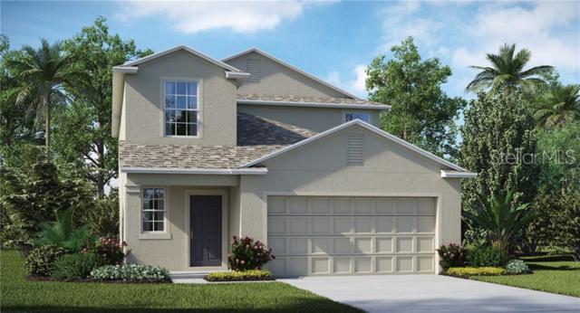7034 Emerald Spring Loop, New Port Richey, FL 34653 (MLS #T3182244) :: Lock & Key Realty