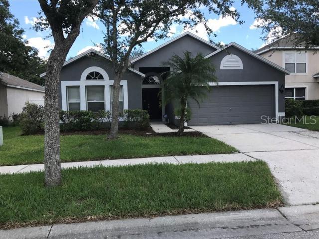 8232 Stockton Way, Tampa, FL 33647 (MLS #T3182260) :: Team Bohannon Keller Williams, Tampa Properties