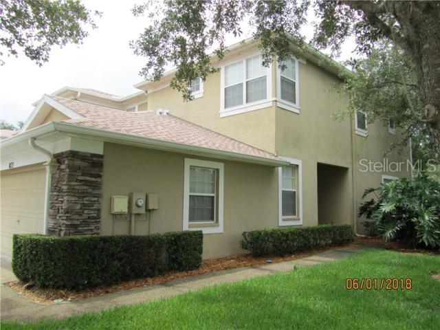 8133 Stone Path Way, Tampa, FL 33647 (MLS #T3182267) :: Team Bohannon Keller Williams, Tampa Properties