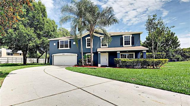 8451 Lainie Lane, Orlando, FL 32818 (MLS #T3182275) :: Dalton Wade Real Estate Group