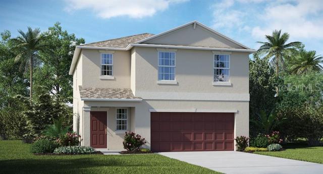 6994 Emerald Spring Loop, New Port Richey, FL 34653 (MLS #T3182297) :: Lock & Key Realty