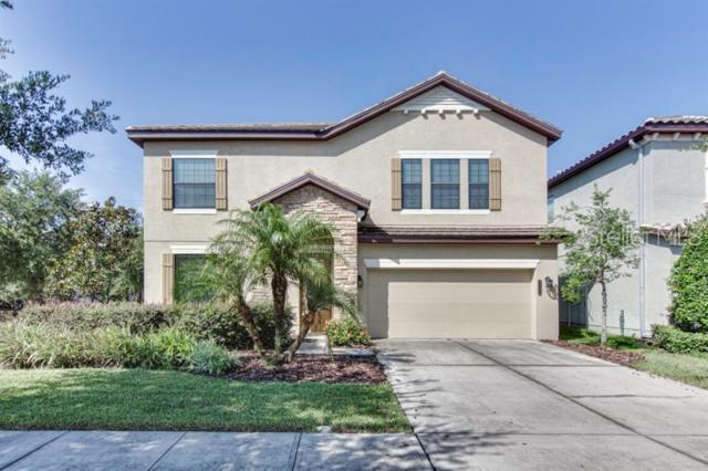8209 Dunham Station Drive, Tampa, FL 33647 (MLS #T3182303) :: Team Bohannon Keller Williams, Tampa Properties