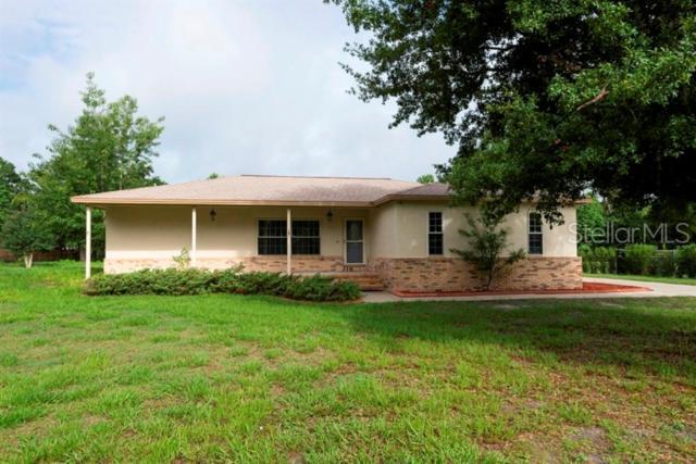 7335 Avocet Drive, Wesley Chapel, FL 33544 (MLS #T3182355) :: Team Bohannon Keller Williams, Tampa Properties