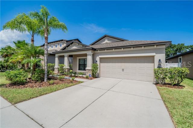 4738 Woods Landing Lane, Tampa, FL 33619 (MLS #T3182426) :: Griffin Group
