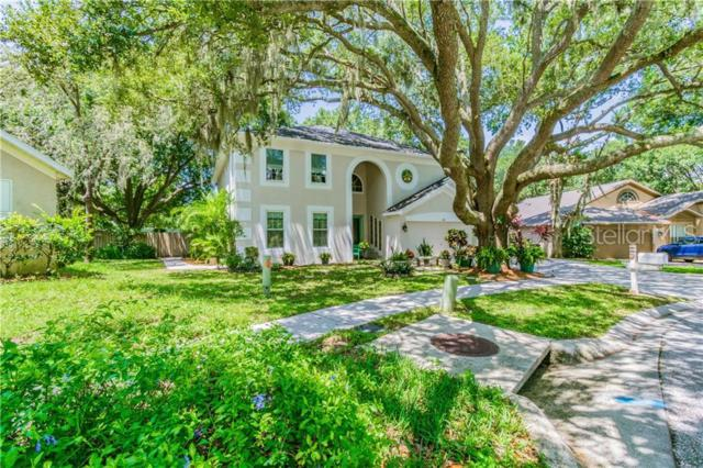 709 Grand Canyon Drive, Valrico, FL 33594 (MLS #T3182451) :: Dalton Wade Real Estate Group