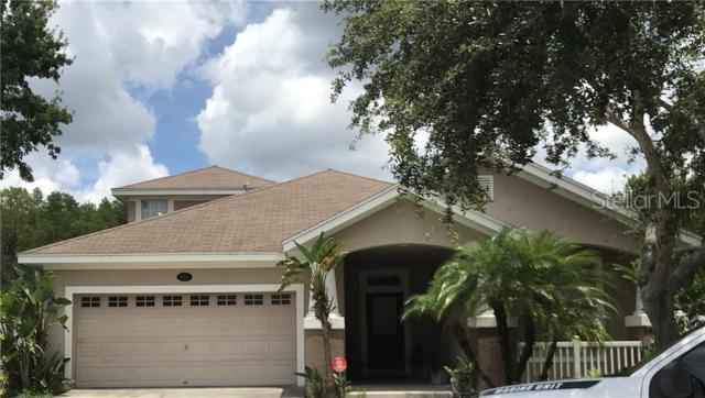 18211 Tivoli Lane, Lutz, FL 33558 (MLS #T3182477) :: Team Bohannon Keller Williams, Tampa Properties